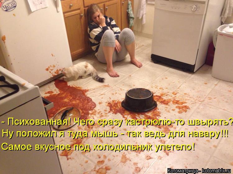 Котоматрица: - Психованная! Чего сразу кастрюлю-то швырять? Ну положил я туда мышь - так ведь для навару!!! Самое вкусное под холодильник улетело!