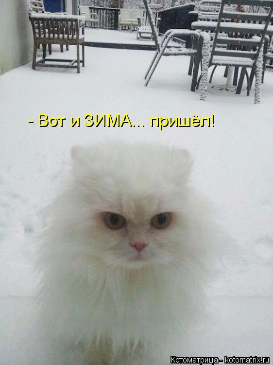 Котоматрица: - Вот и ЗИМА... пришёл!