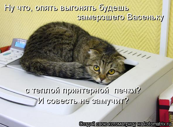 Котоматрица: Ну что, опять выгонять будешь замерзшего Васеньку с теплой принтерной  печки? И совесть не замучит?