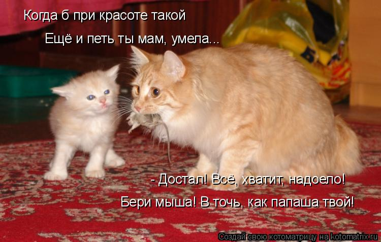 Котоматрица: - Достал! Всё, хватит, надоело! Бери мыша! В точь, как папаша твой! Когда б при красоте такой  Ещё и петь ты мам, умела...