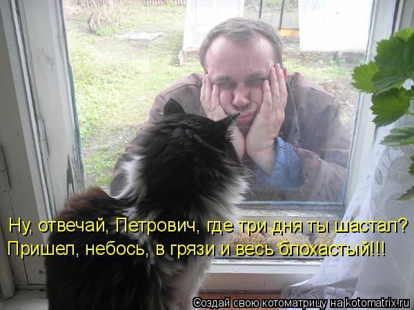 Котоматрица: Ну, отвечай, Петрович, где три дня ты шастал? Пришел, небось, в грязи и весь блохастый!!!