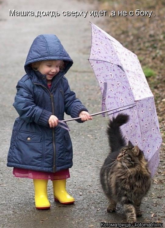 Котоматрица: Машка,дождь сверху идёт ,а не с боку..