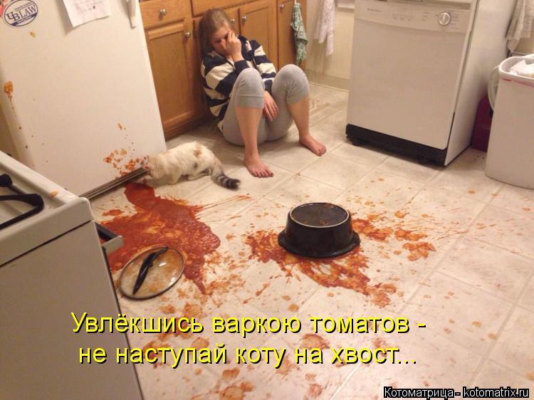 Котоматрица: Увлёкшись варкою томатов -  не наступай коту на хвост...