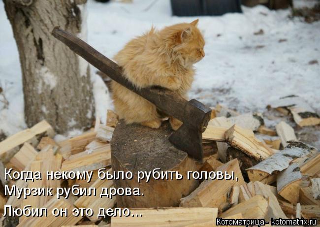 Котоматрица: Когда некому было рубить головы,  Мурзик рубил дрова. Любил он это дело...