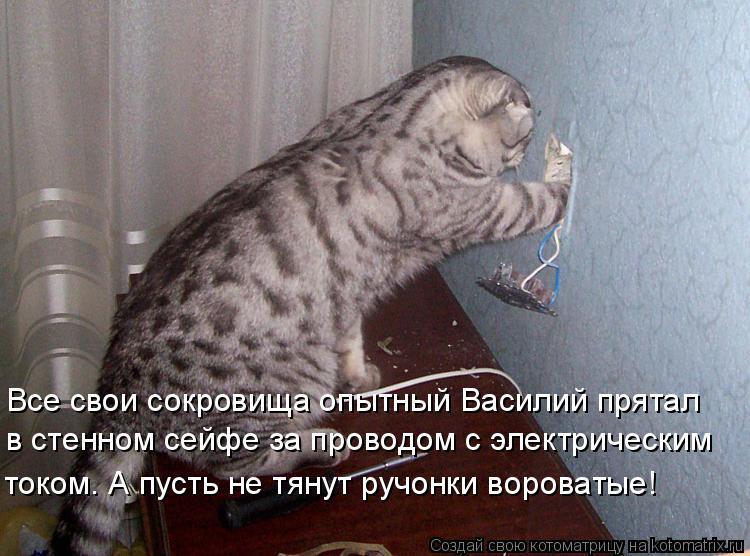 Котоматрица: Все свои сокровища опытный Василий прятал в стенном сейфе за проводом с электрическим током. А пусть не тянут ручонки вороватые!