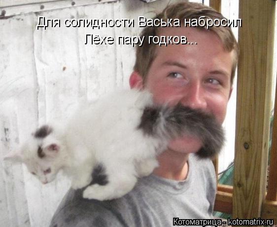 Котоматрица: Для солидности Васька набросил Лёхе пару годков...