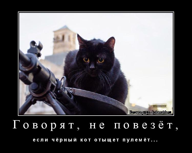 Котоматрица: Говорят, не повезёт, е с л и   ч ё р н ы й   к о т   о т ы щ е т   п у л е м ё т . . .