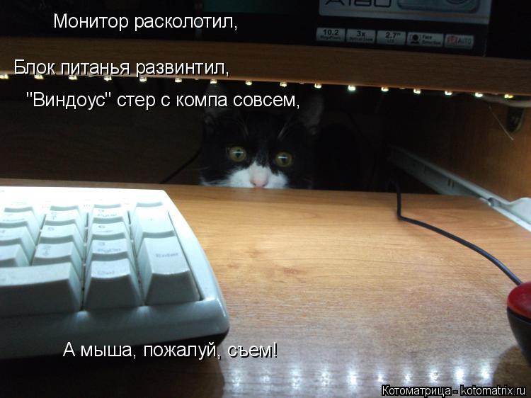 """Котоматрица: Монитор расколотил, Блок питанья развинтил, """"Виндоус"""" стер с компа совсем,  А мыша, пожалуй, съем!"""