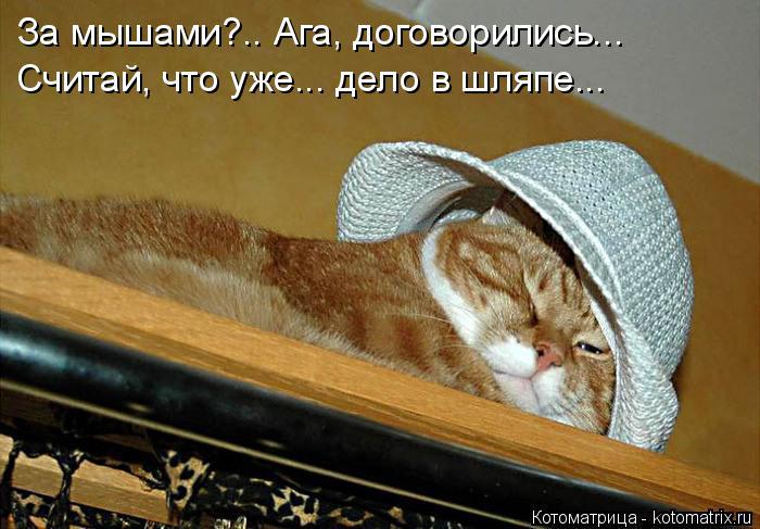 Котоматрица: За мышами?.. Ага, договорились...  Считай, что уже... дело в шляпе...