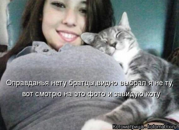 Котоматрица: вот смотрю на это фото и завидую коту Оправданья нету братцы,видно выбрал я не ту,