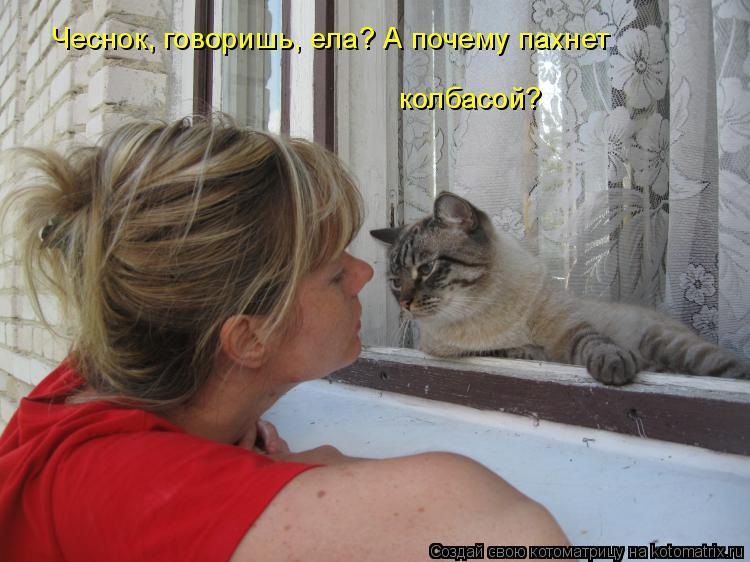 Котоматрица: Чеснок, говоришь, ела? А почему пахнет колбасой?