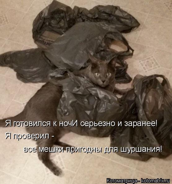 Котоматрица: Я готовился к ночИ серьезно и заранее! Я проверил -   все мешки пригодны для шуршания!