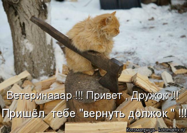 """Котоматрица: Ветеринааар !!! Привет , Дружок !!! Пришёл  тебе """"вернуть должок """" !!!"""