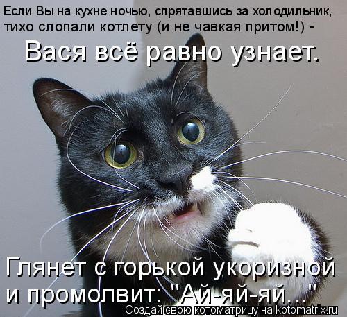 Котоматрица: Если Вы на кухне ночью, спрятавшись за холодильник, тихо слопали котлету (и не чавкая притом!) -  Вася всё равно узнает. Глянет с горькой укори
