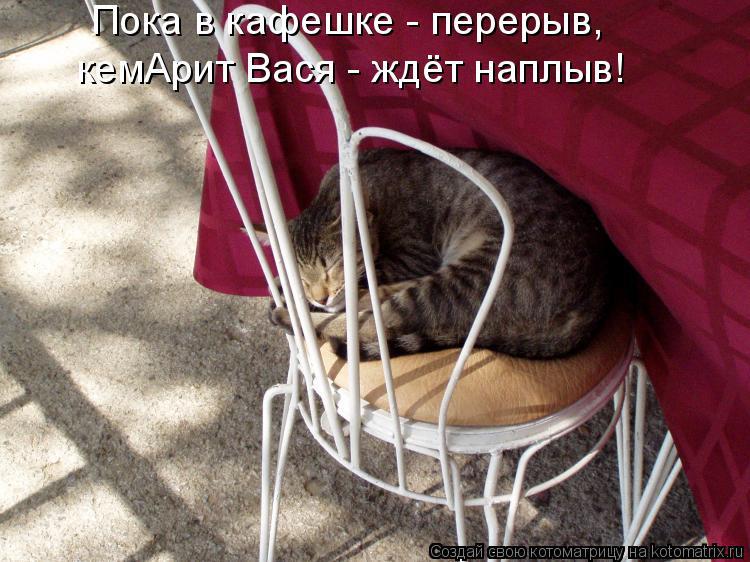 Котоматрица: Пока в кафешке - перерыв, кемАрит Вася - ждёт наплыв!