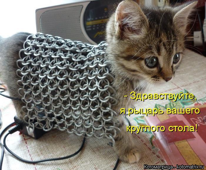 Котоматрица: - Здравствуйте,  я рыцарь вашего круглого стола!
