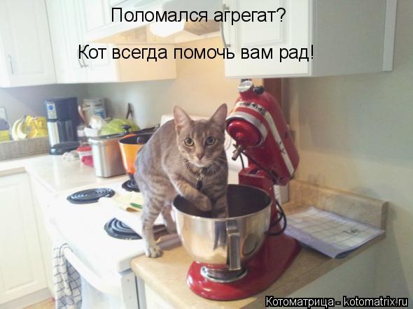 Котоматрица: Поломался агрегат? Кот всегда помочь вам рад!