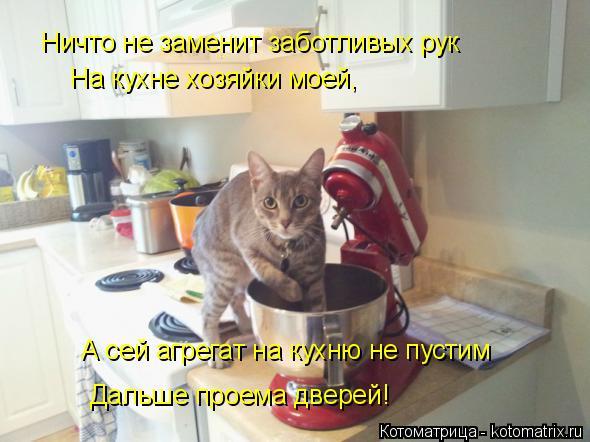Котоматрица: Ничто не заменит заботливых рук  На кухне хозяйки моей,  А сей агрегат на кухню не пустим Дальше проема дверей!