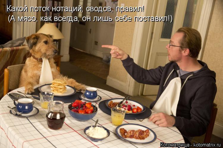 Котоматрица: Какой поток нотаций, сводов, правил! (А мясо, как всегда, он лишь себе поставил!)