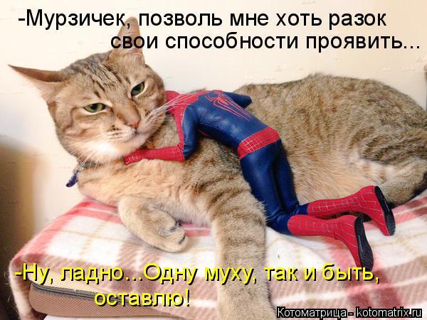 Котоматрица: -Мурзичек, позволь мне хоть разок свои способности проявить... оставлю! -Ну, ладно...Одну муху, так и быть,