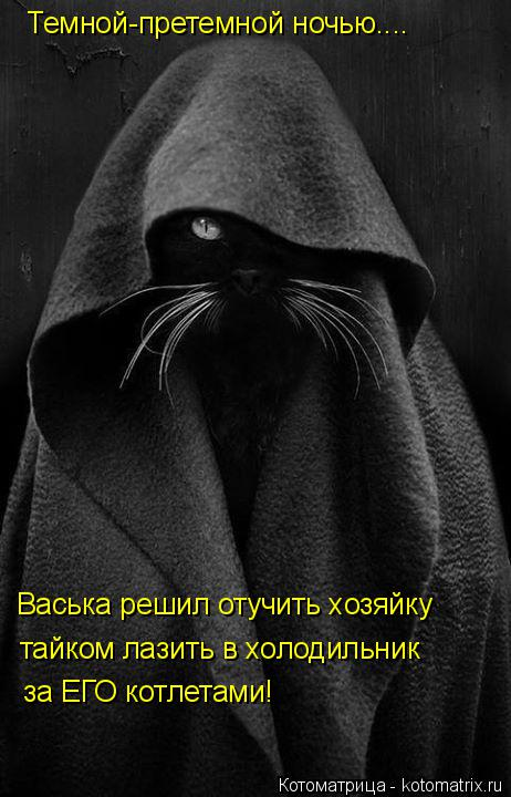 Котоматрица: Темной-претемной ночью.... Васька решил отучить хозяйку  тайком лазить в холодильник  за ЕГО котлетами!