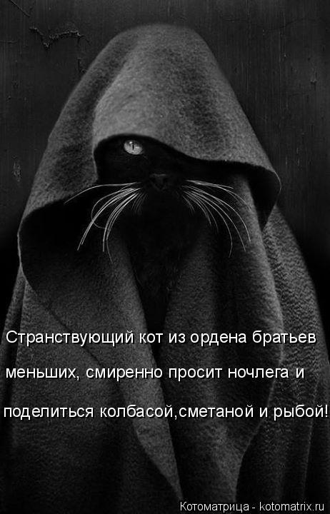 Котоматрица: Странствующий кот из ордена братьев меньших, смиренно просит ночлега и  поделиться колбасой,сметаной и рыбой!
