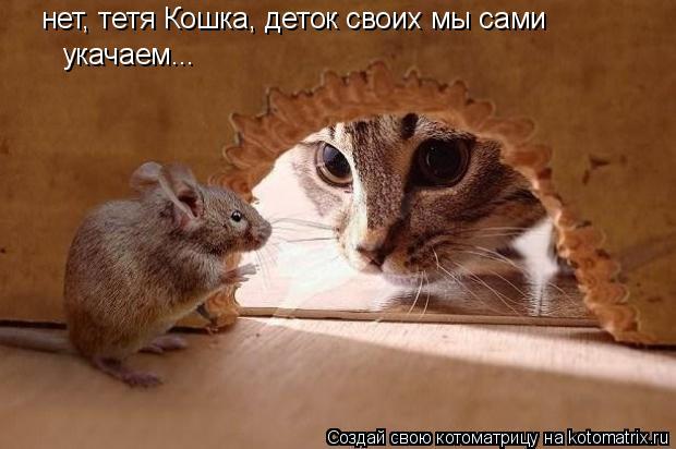 Котоматрица: нет, тетя Кошка, деток своих мы сами укачаем...
