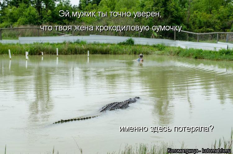 Котоматрица: Эй,мужик,ты точно уверен, что твоя жена крокодиловую сумочку именно здесь потеряла?