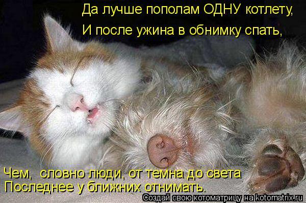 Котоматрица: Да лучше пополам ОДНУ котлету,  И после ужина в обнимку спать,  Чем,  словно люди, от темна до света Последнее у ближних отнимать.