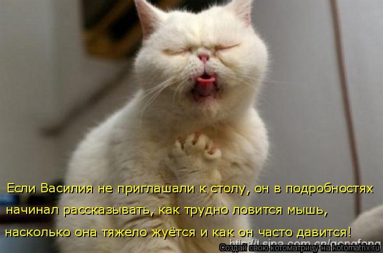 Котоматрица: Если Василия не приглашали к столу, он в подробностях насколько она тяжело жуётся и как он часто давится! начинал рассказывать, как трудно л