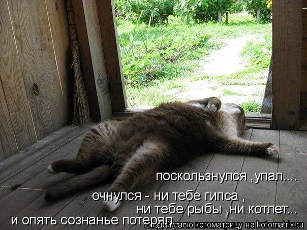 Котоматрица: поскользнулся ,упал.... очнулся - ни тебе гипса , ни тебе рыбы ,ни котлет... и опять сознанье потерял....