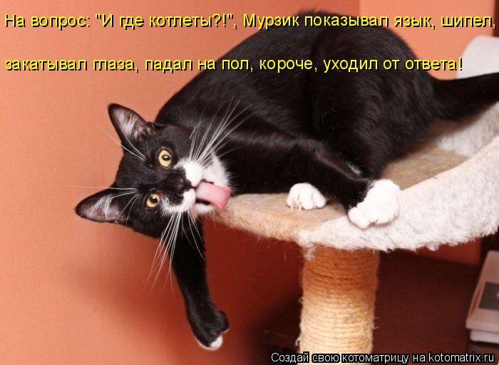 """Котоматрица: На вопрос: """"И где котлеты?!"""", Мурзик показывал язык, шипел, закатывал глаза, падал на пол, короче, уходил от ответа!"""