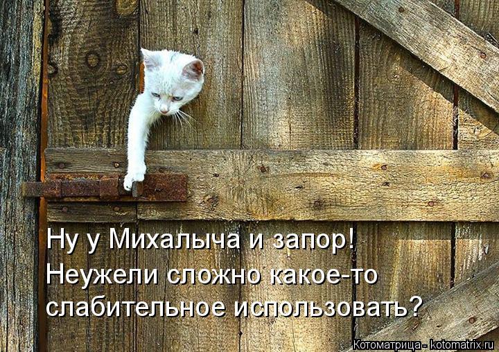 Котоматрица: Ну у Михалыча и запор! Неужели сложно какое-то слабительное использовать?
