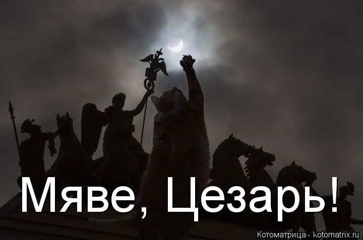 Котоматрица: Мяве, Цезарь!