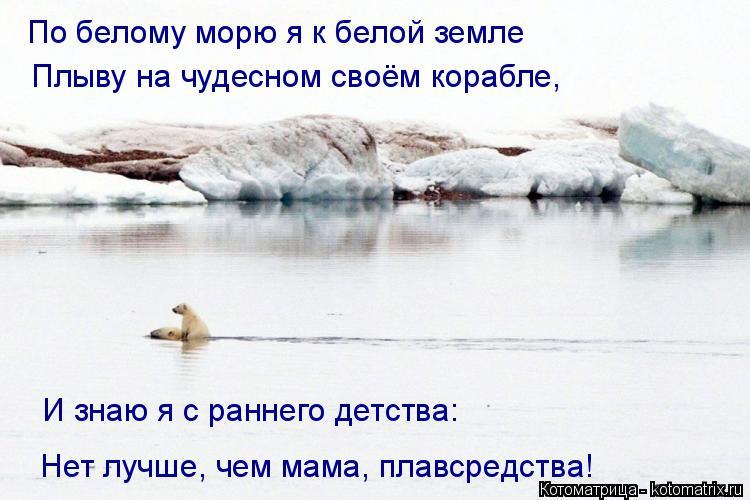 Котоматрица: По белому морю я к белой земле  Плыву на чудесном своём корабле, И знаю я с раннего детства: Нет лучше, чем мама, плавсредства!