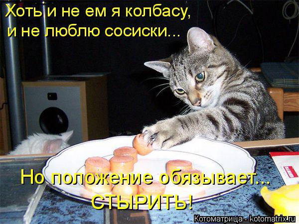 Котоматрица: Хоть и не ем я колбасу,  и не люблю сосиски... Но положение обязывает... СТЫРИТЬ!