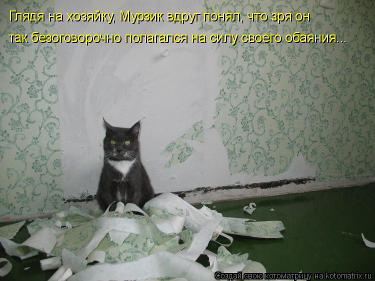 Котоматрица: Глядя на хозяйку, Мурзик вдруг понял, что зря он так безоговорочно полагался на силу своего обаяния...