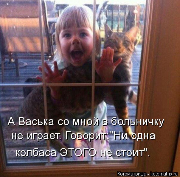 """Котоматрица: А Васька со мной в больничку не играет. Говорит:""""Ни одна  колбаса ЭТОГО не стоит""""."""