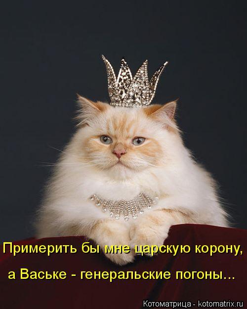 Котоматрица: Примерить бы мне царскую корону, а Ваське - генеральские погоны...