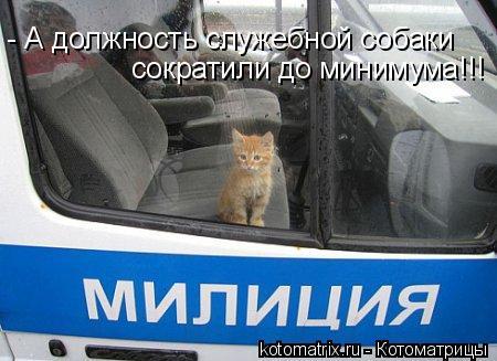 Котоматрица: - А должность служебной собаки  сократили до минимума!!!