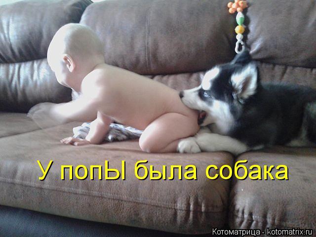 Котоматрица: У попЫ была собака