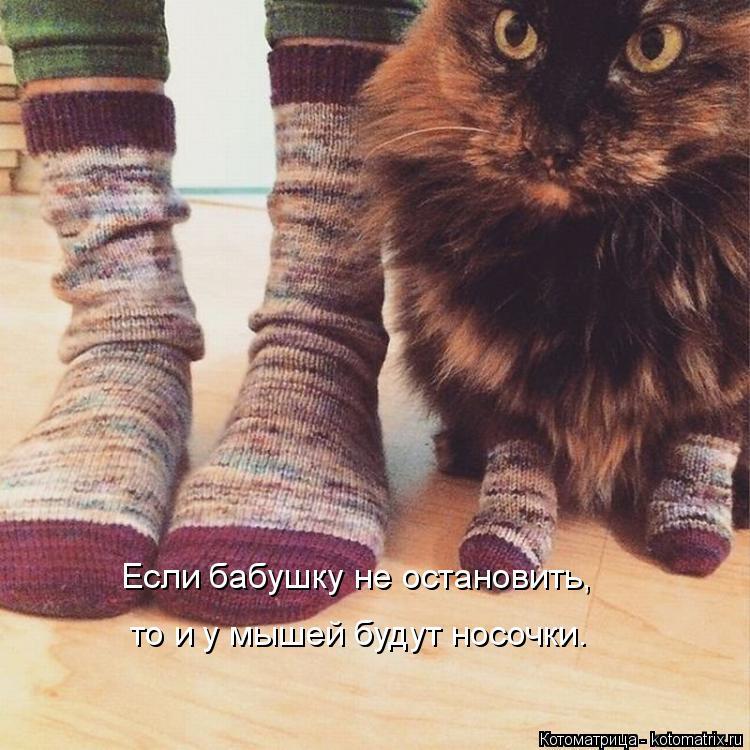 Котоматрица: Если бабушку не остановить, то и у мышей будут носочки.
