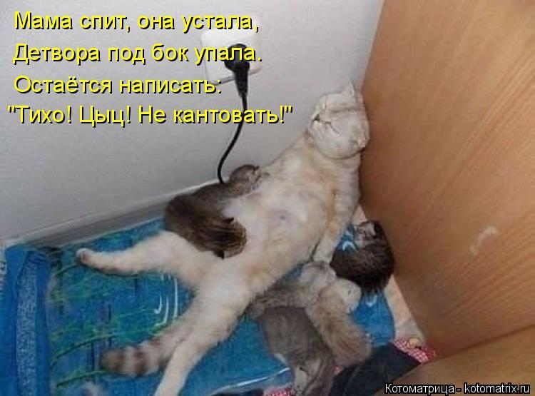 Фото спящих мам под одеждой 10 фотография