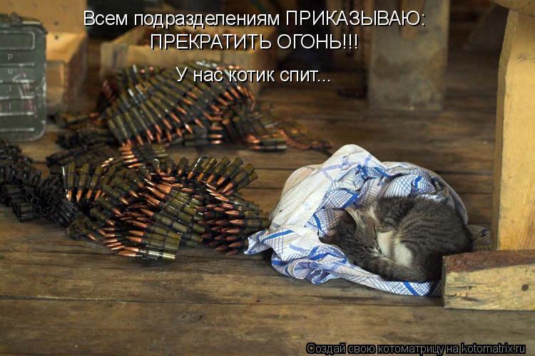 Котоматрица: Всем подразделениям ПРИКАЗЫВАЮ: ПРЕКРАТИТЬ ОГОНЬ!!! У нас котик спит...