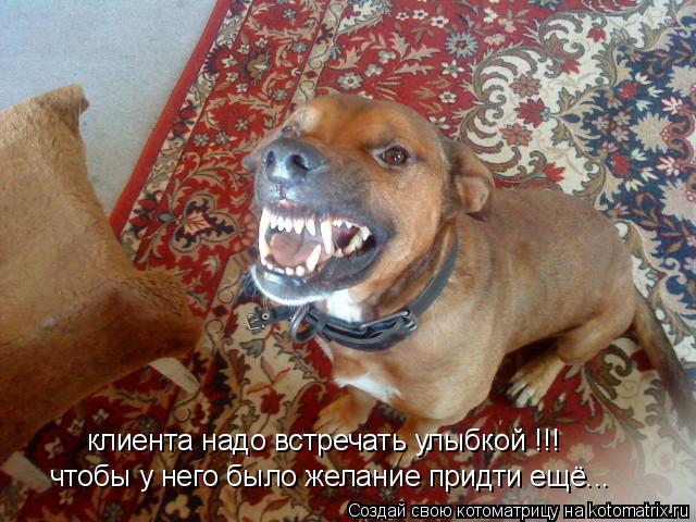 Котоматрица: клиента надо встречать улыбкой !!! чтобы у него было желание придти ещё...