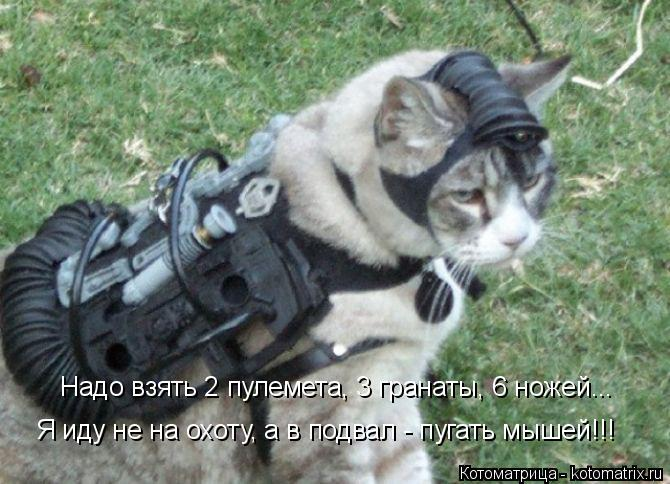 Котоматрица: Надо взять 2 пулемета, 3 гранаты, 6 ножей... Я иду не на охоту, а в подвал - пугать мышей!!!