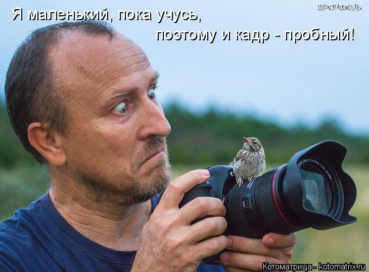 Котоматрица: Я маленький, пока учусь, поэтому и кадр - пробный!