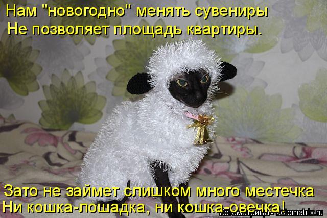 """Котоматрица: Нам """"новогодно"""" менять сувениры Не позволяет площадь квартиры. Зато не займет слишком много местечка Ни кошка-лошадка, ни кошка-овечка!"""