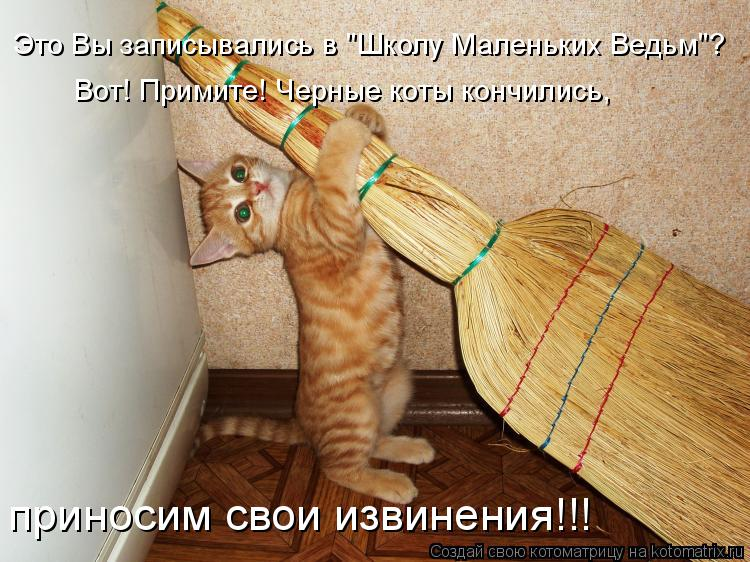 """Котоматрица: Это Вы записывались в """"Школу Маленьких Ведьм""""? Вот! Примите! Черные коты кончились, приносим свои извинения!!!"""