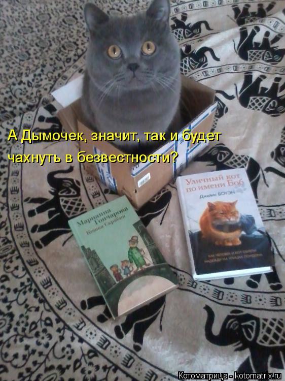 http://kotomatrix.ru/images/lolz/2015/07/10/kotomatritsa_M.jpg